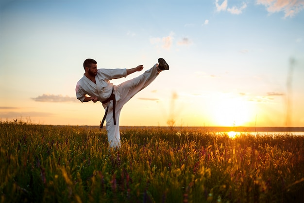 Silueta de hombre deportivo entrenamiento karate en campo al amanecer.