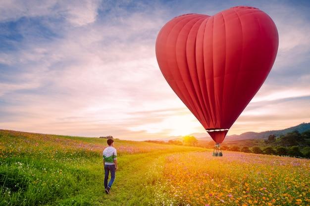 Silueteado del hombre asiático que se coloca en las flores del cosmos con el globo rojo del aire caliente en la forma de un corazón sobre la puesta del sol.