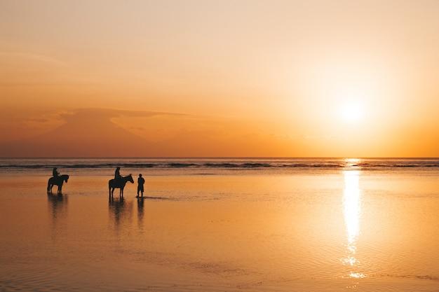 Siluetee el retrato de la joven pareja romántica que monta a caballo en la playa. niña y su novio al atardecer dorado colorido