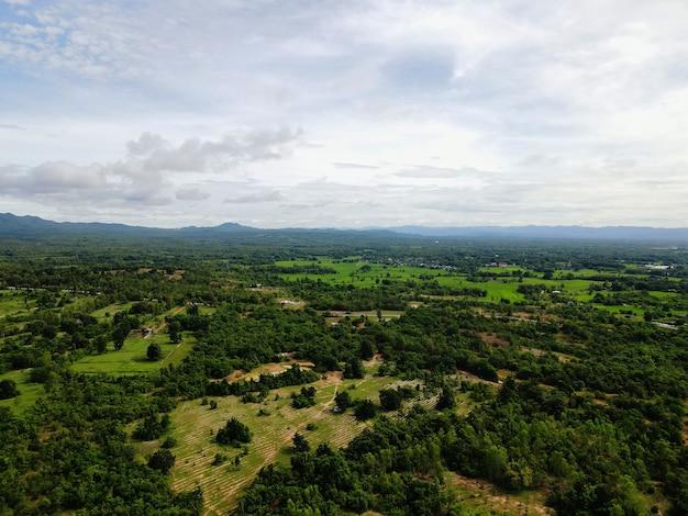 Silvicultura con volúmenes decrecientes. tiro de ángulo alto desde drones en tailandia