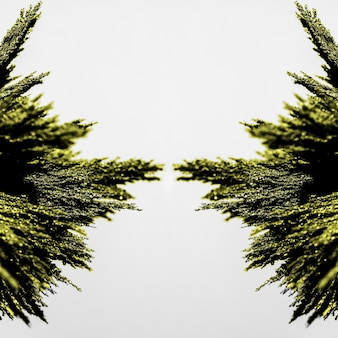 Simetría del afeitado metálico verde sobre fondo blanco.