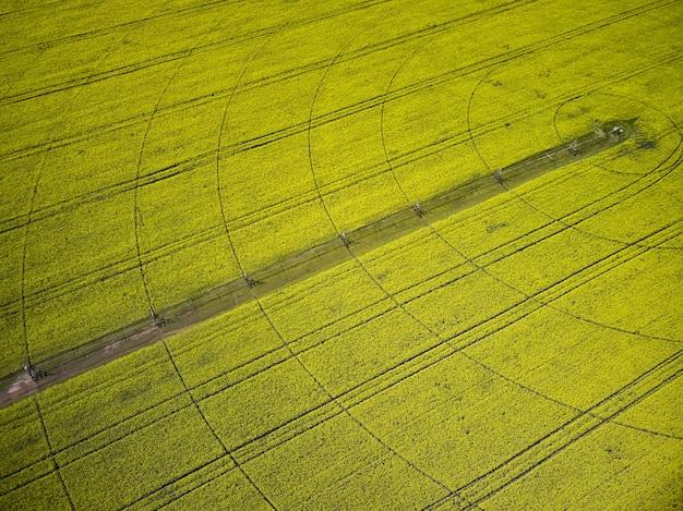 Sistema de riego de pivote central en un campo de colza amarillo vista aérea de drone