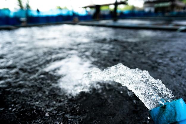 Sistema de tratamiento de flujo de agua desde la tubería de la bomba de agua. movimiento de agua que brota de la tubería de la granja de peces koi pond carp en busca de oxígeno.