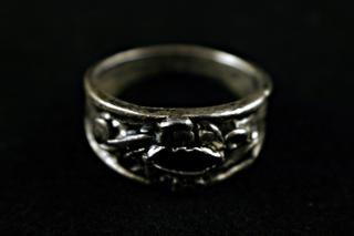 Siver anillo