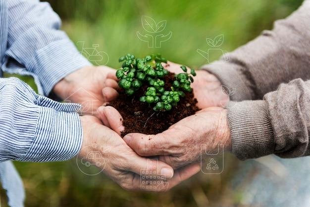 Smart farming 5.0 tecnología agrícola de productos de plantas verdes