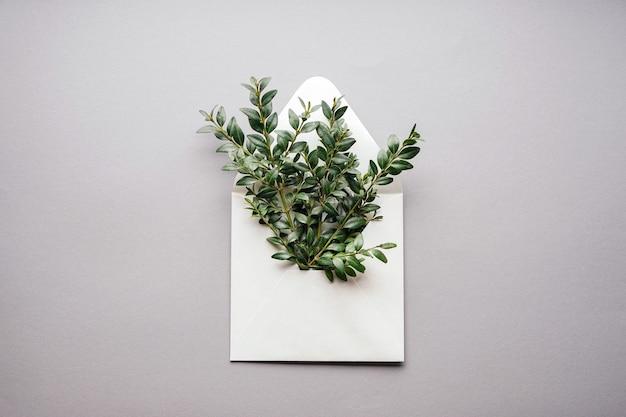 Sobre de papel con ramas verdes