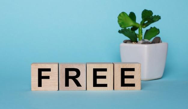 Sobre una superficie azul, en cubos de madera cerca de una planta en una maceta está escrito gratis