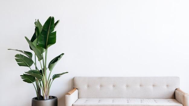 Sofá de tela beige moderno y planta en salón