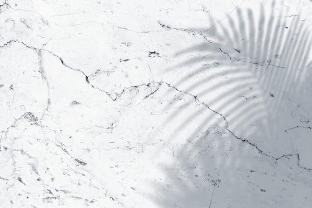 Sombra de hojas de palmera sobre mármol