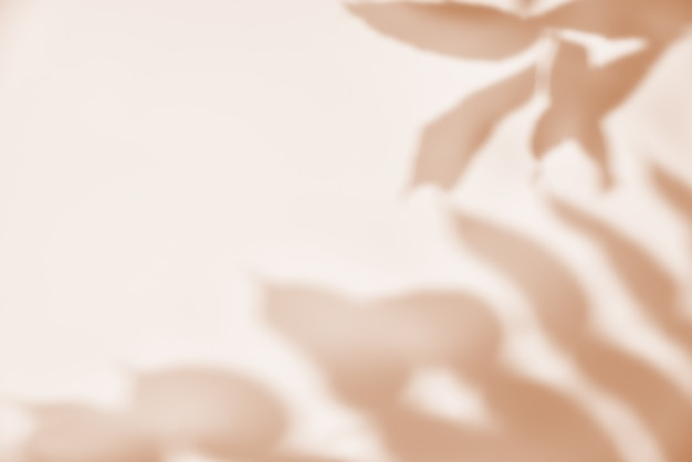 Sombra de hojas sobre fondo pastel. fondo abstracto creativo. patrón de sombra de la naturaleza