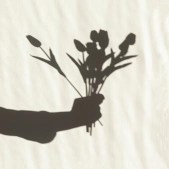Sombra de mano sosteniendo tulipanes