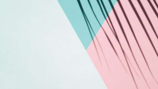 Sombra de palma sobre un fondo azul pálido, azul claro y rosa
