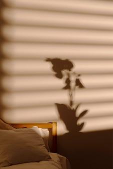 Sombra de ventana en la pared del dormitorio