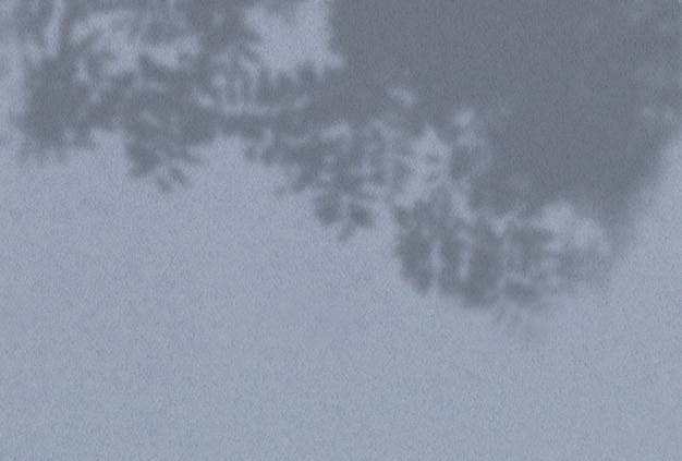 Sombra de vista superior de hojas de roble
