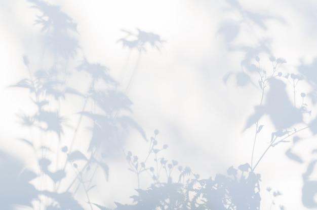 Sombras de flores sobre una tela blanca semitransparente