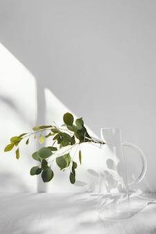 Sombras y planta de concepto mínimo abstracto