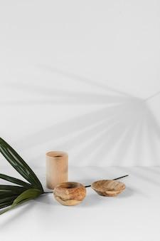 Sombras y planta mínima abstracta