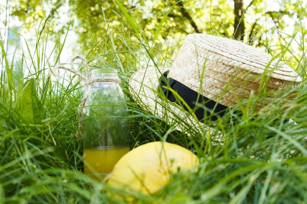 Sombrero con fruta en el picnic de hierba.