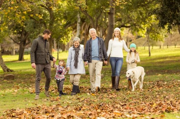 Sonriendo familia extendida caminando juntos