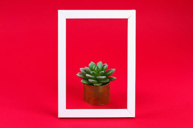 Suculento verde artificial en una olla de oro con funda de baño en marco blanco sobre rojo burdeos.