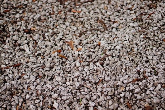 Suelo cubierto de pequeñas piedras bajo la luz del sol con un fondo borroso