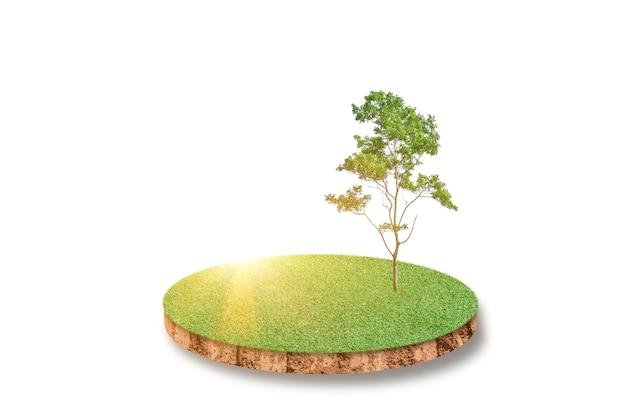 Suelo de sección transversal del campo de hierba verde aislado