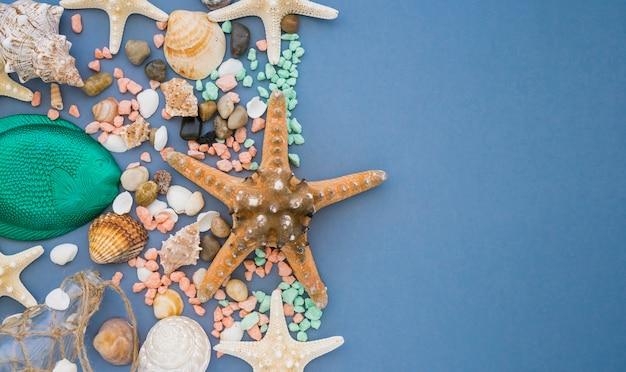 Superficie azul con estrella de mar y conchas marinas