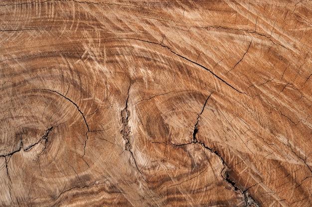 Superficie de madera erosionada