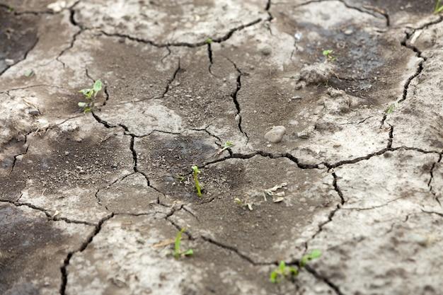 Superficie plana de tierra seca agrietada, textura abstracta, copia espacio de fondo, patrón retro.