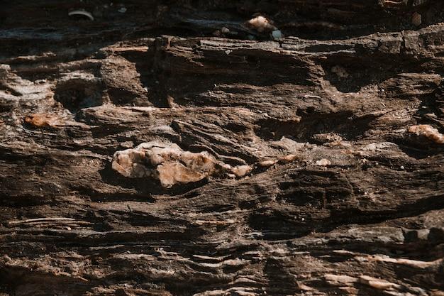 Superficie rugosa de la piedra.
