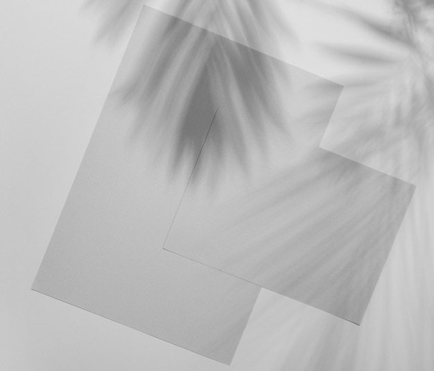 Superposición de folleto simplista con sombra de vegetación