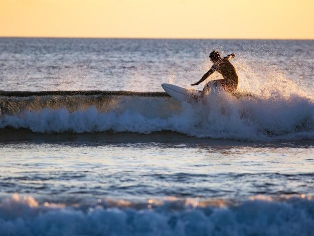 Surfista en la ola
