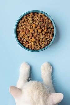 Surtido de alimentos para mascotas de naturaleza muerta