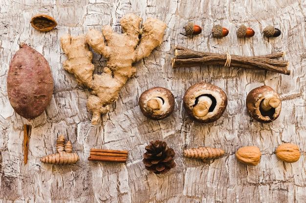 Surtido de alimentos de otoño y partes de árboles