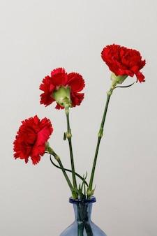 Surtido de bodegones de flores de interior en florero