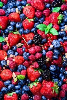Surtido de fresa, arándano, frambuesa, mora, grosella, menta. concepto de alimentación vegana, vegetariana y limpia.
