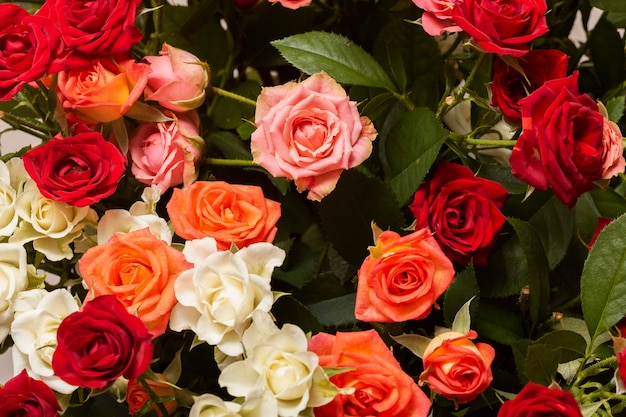 Surtido de hermosas flores de fondo.