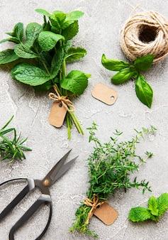 Surtido de hierbas aromáticas frescas desde arriba sobre hormigón gris.