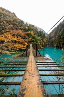 Suspensión del puente de madera sobre el río verde en la temporada de otoño del bosque natural japón