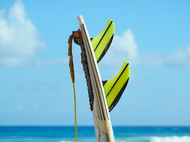 Tabla de surf con aletas y correa en una playa en el océano