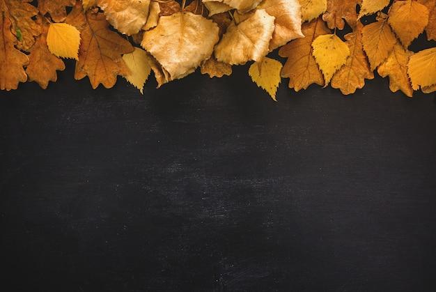 Tablero de hojas de otoño sobre fondo de pizarra