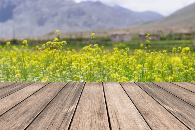 Tablero de madera vieja con fondo de campo de flor de mostaza