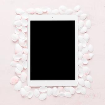 Tableta con conchas sobre fondo claro