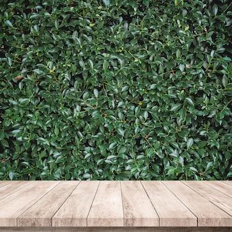 Tablón de madera viejo con fondo de hojas verde abstracto natural para exhibición de productos
