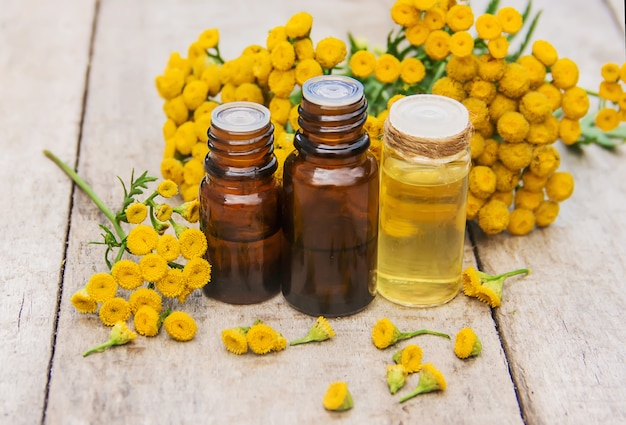 Tansy extracto medicinal, tintura, decocción, aceite, en una pequeña botella.