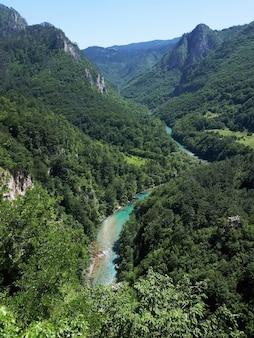 Tara river canyon en montenegro