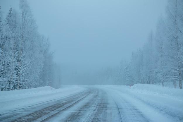 Tarde del bosque del norte. carretera vacía. mucha nieve y niebla