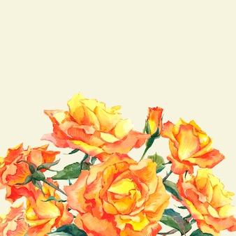 Tarjeta de acuarela con rosas de jardín amarillo