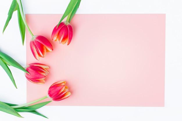 Tarjeta de felicitación con marco de tulipanes frescos sobre fondo rosa.
