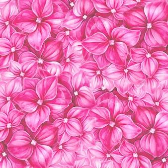Tarjeta de flores de hortensia rosa.
